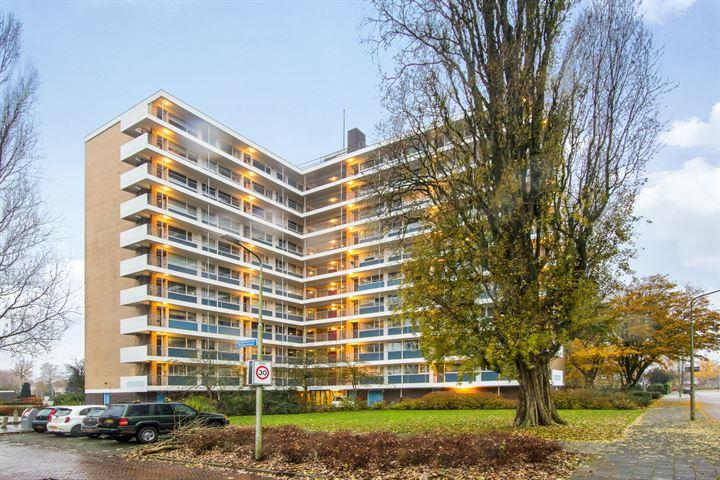 Zonnesteinhof 14
