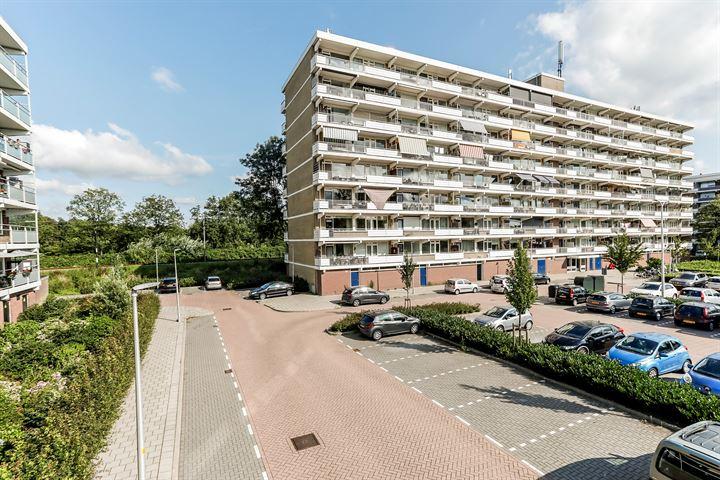 Peppelhorst 16