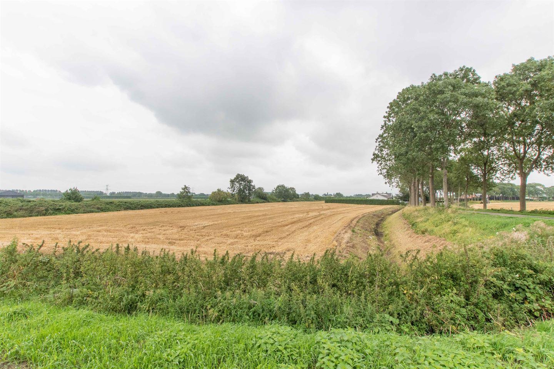 Bekijk foto 2 van Zwinweg