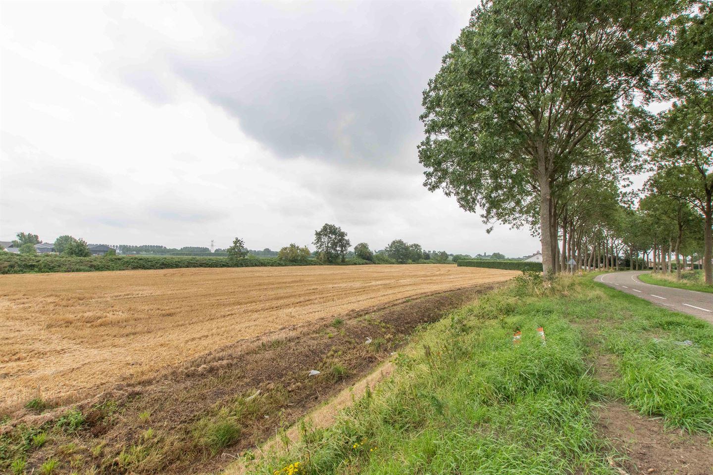 Bekijk foto 3 van Zwinweg