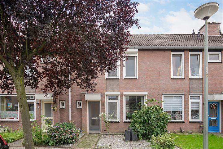 Genhout 6