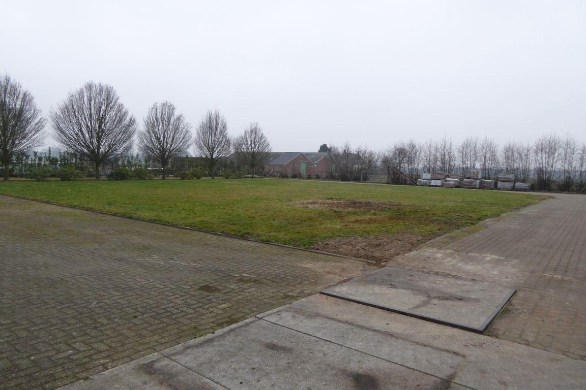 Bekijk foto 4 van Moerstraatsebaan 230