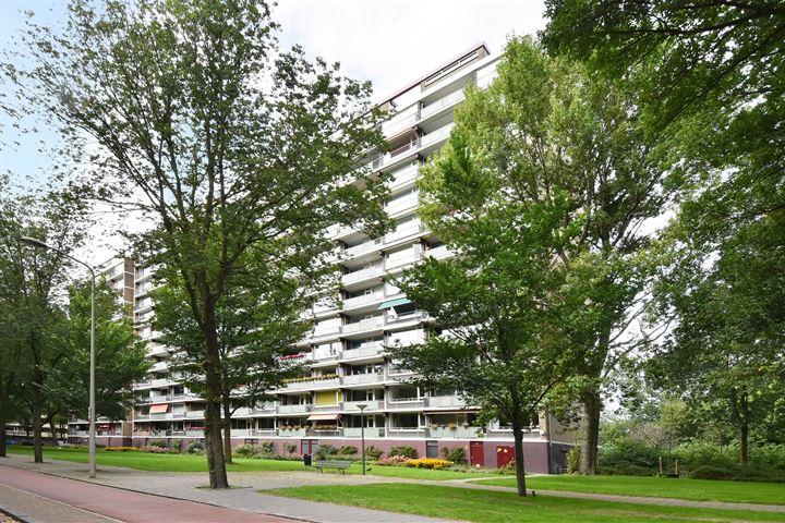 Nieuwendamlaan 58