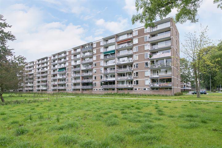 Adriaan Dortsmanstraat 149