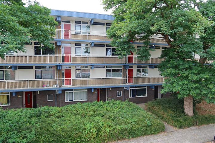 Jan van Goyenstraat 130