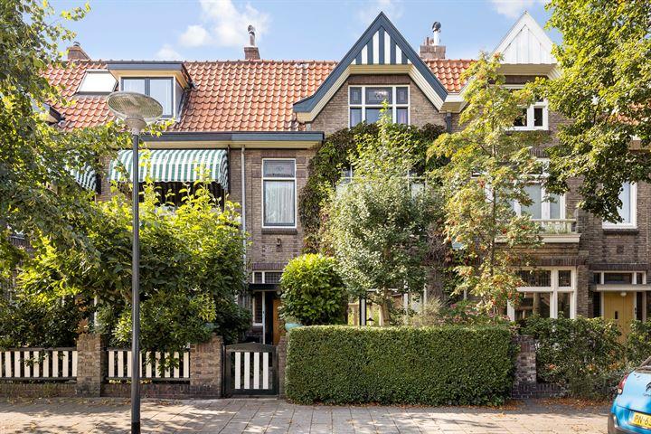 Johan de Wittstraat 20