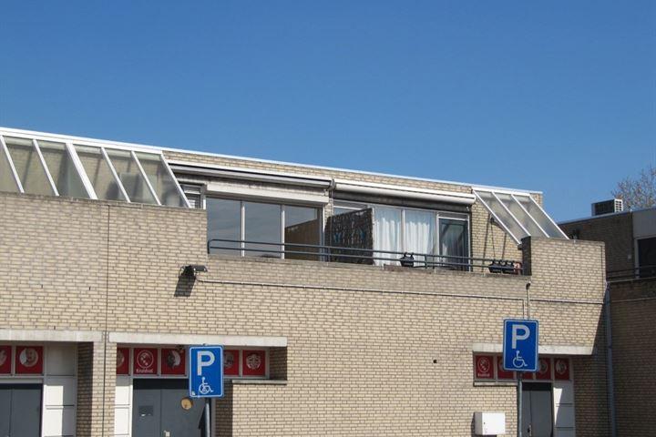 Biesbosch 7