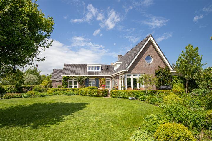 Biesbosch 4