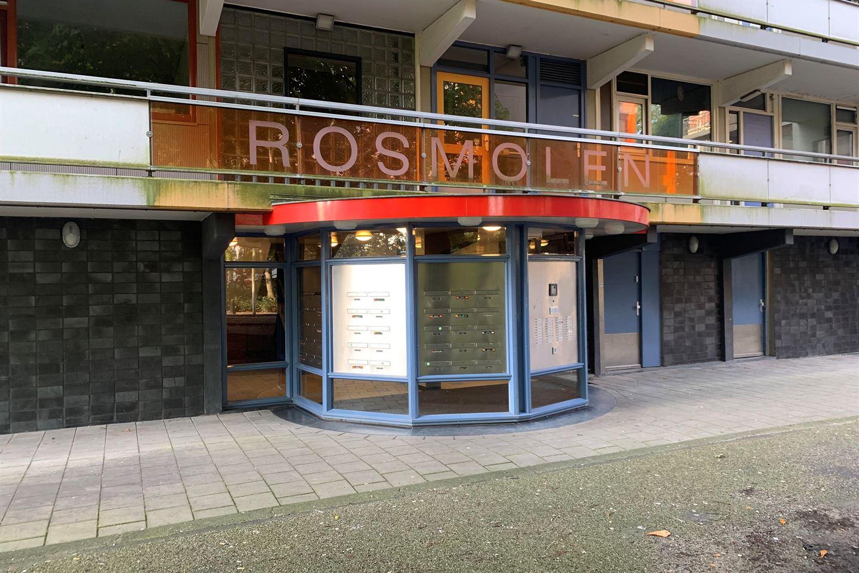 Bekijk foto 2 van Rosmolen 39