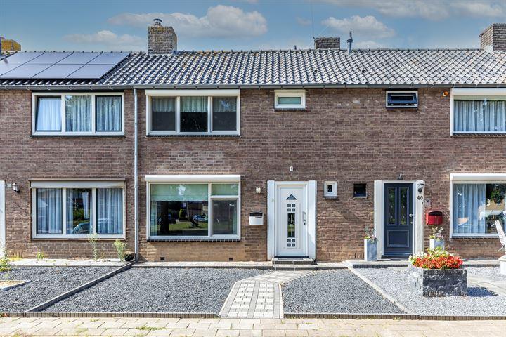 Graaf Gerardstraat 48