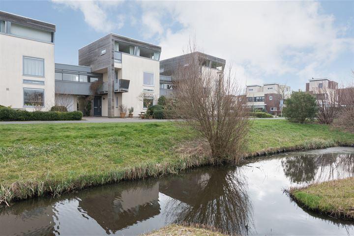 Jan Wilspark 29