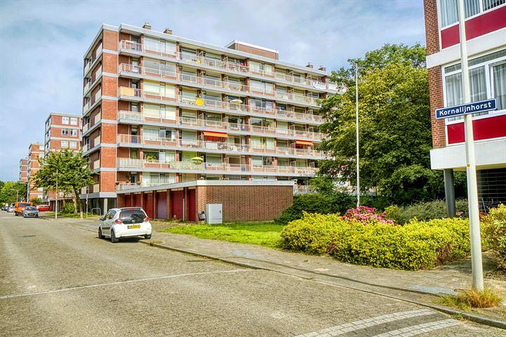 Kornalijnhorst 324