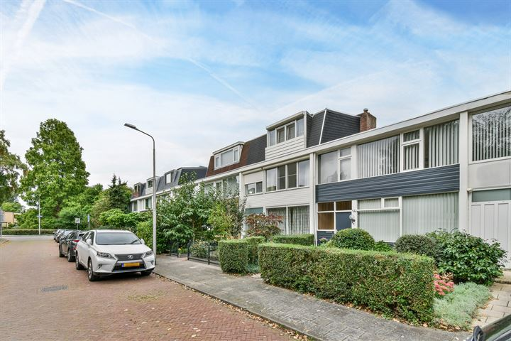Biesbosch 12
