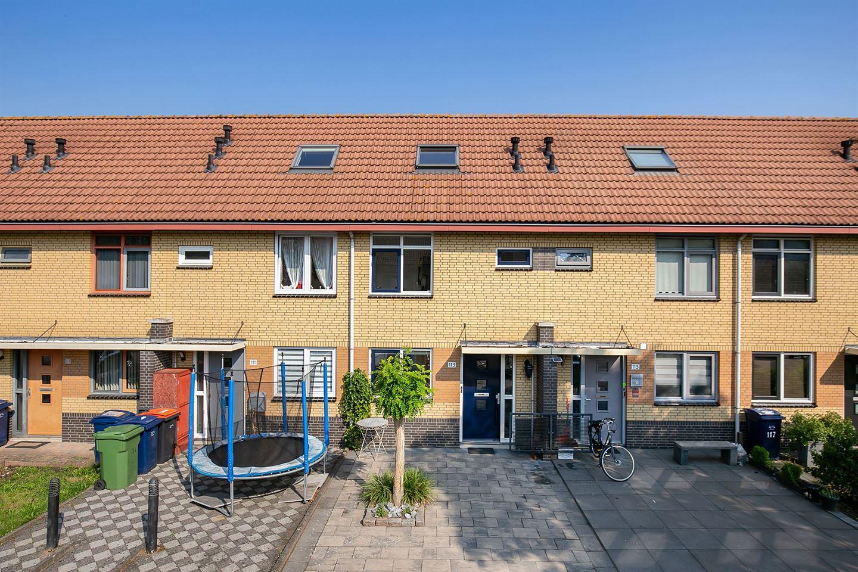Bekijk foto 1 van Johannes Vermeerstraat 113