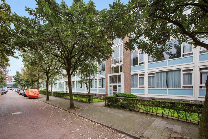 Willem Pijperstraat 238