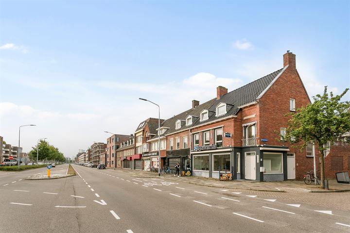 Boschdijk 229