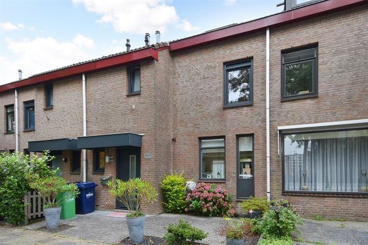 Q.A. Nederpelstraat 222