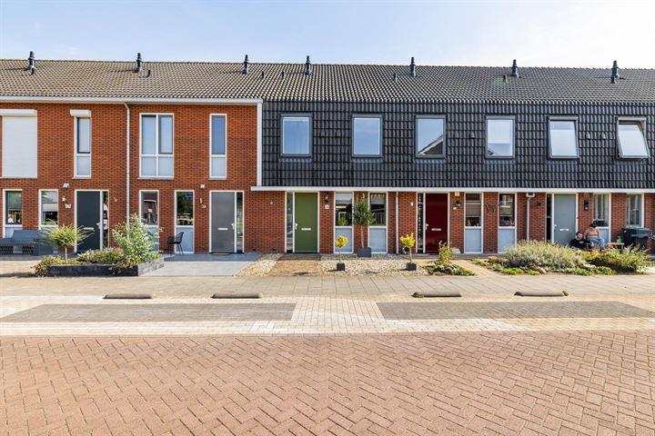 Colijnhof 34