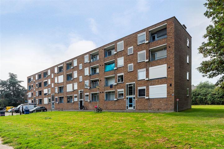 Pieter de Hooghstraat 31