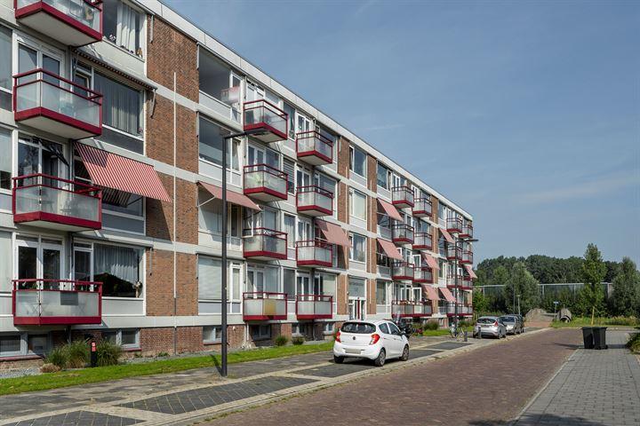 van Viandenstraat 31