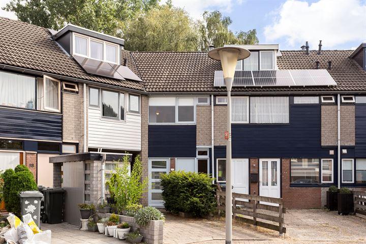 Lieshoutstraat 54