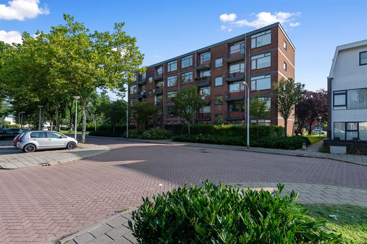 Dovenetelweg 54