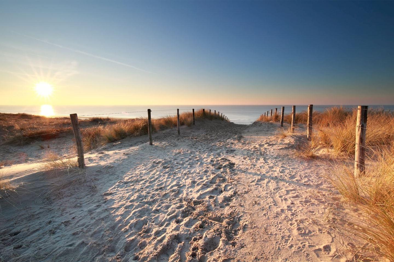 Bekijk foto 5 van Rijndijk 310