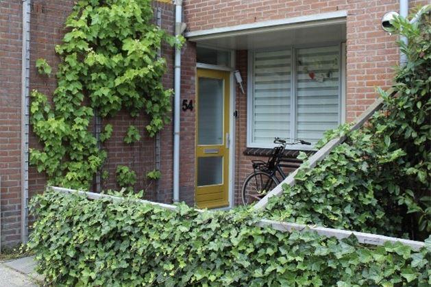 Bekijk foto 2 van Surinamestraat 54