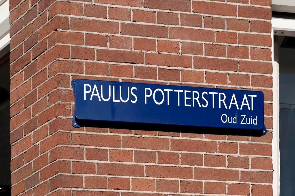 Bekijk foto 4 van Paulus Potterstraat 20
