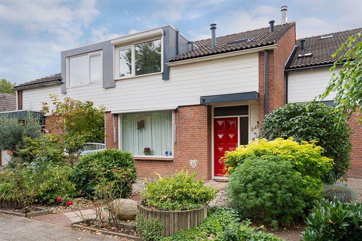 Rijnlaan 246
