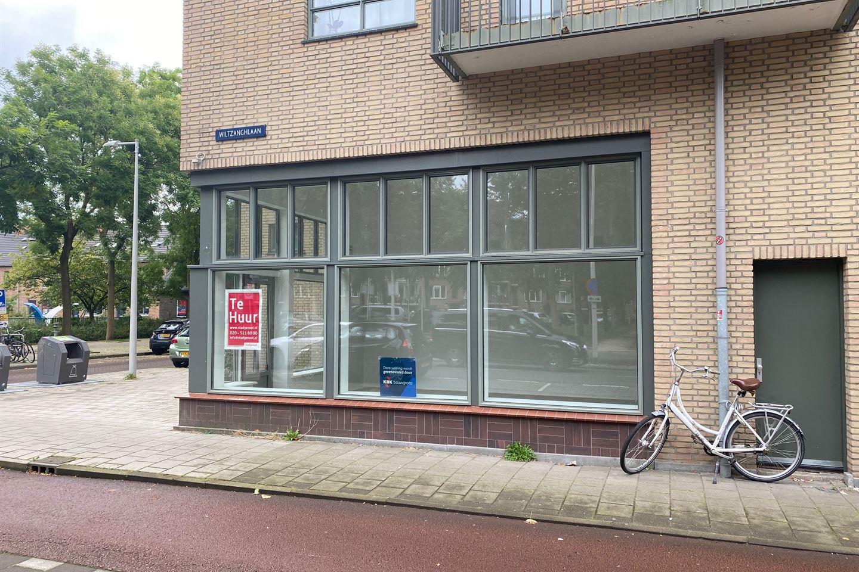 Bekijk foto 3 van Hofwijckstraat 43