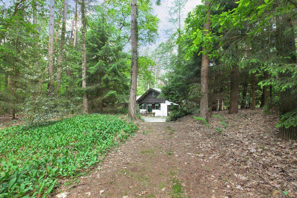 Bekijk foto 3 van Lage Bergweg 11