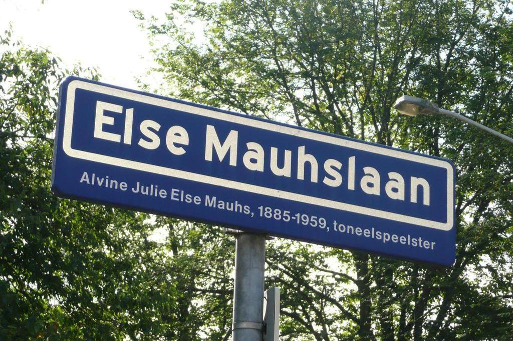 Bekijk foto 1 van Else Mauhslaan 49
