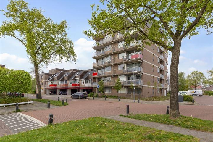 Steendijk 23
