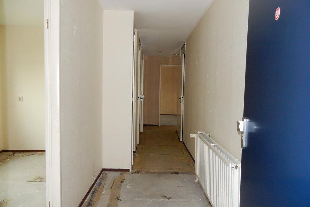 Bekijk foto 4 van Jacob van Ruysdaelstraat 16