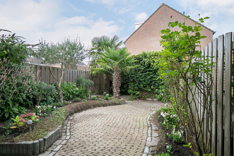 Bekijk foto 5 van Van Riedevliet 35