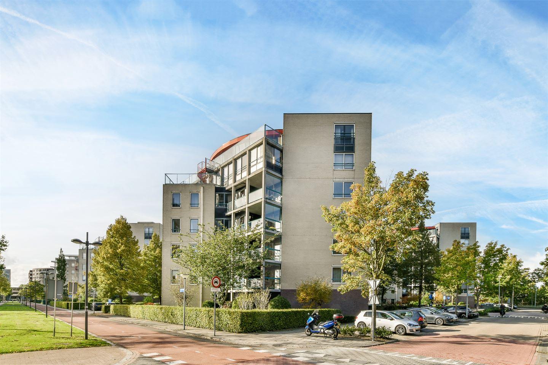 Bekijk foto 1 van Dag Hammarskjöldhof 79