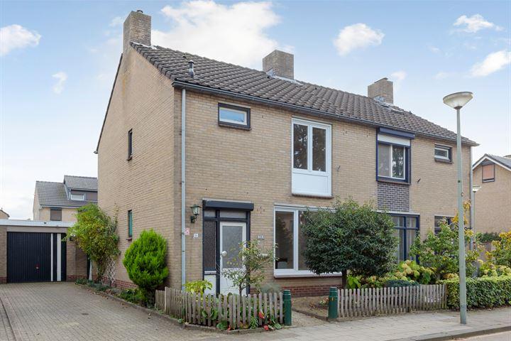 Pieter Breughelstraat 56