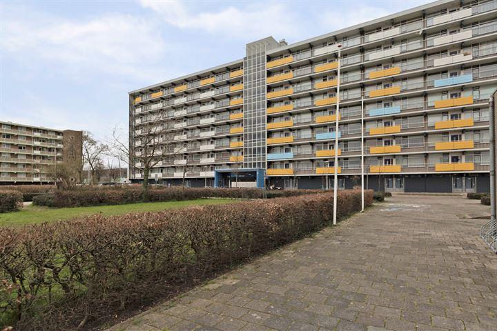 Briljantstraat 362